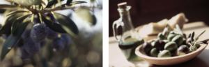 Une huile d'olive extra vierge de haute qualité